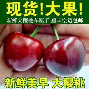 山东省青岛平度市大樱桃代办代收 电/微:15588697...