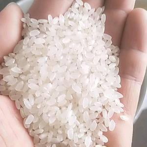 本厂长期加工生产辽大米,质量不变有保证正品