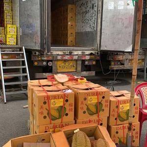 泰国金枕榴莲到货,要货联系,优质货,缺斤少两可举报,所有...