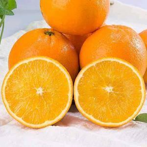 秭归夏橙皮薄肉质细腻脆甜满满的维c产地一手货源大宗批发诚...
