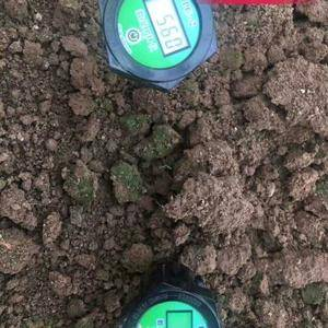 土壤酸碱度检测仪,数显PH计,开机插入土中检测土壤酸碱度...