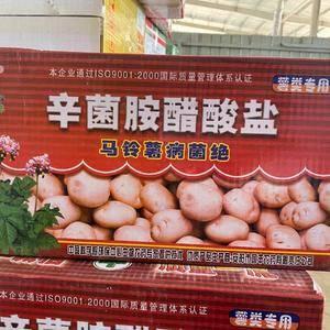 薯类细菌病病毒病专用药,详情请咨询17737011361...