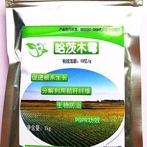 哈茨木霉,能够促进植物根系生长,具备生物防治功能,能够防...