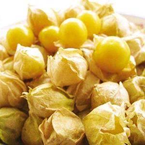 吉林大安菇娘果上市了话停,大棚种植已经上市对教皇,大地种植七月中旬...