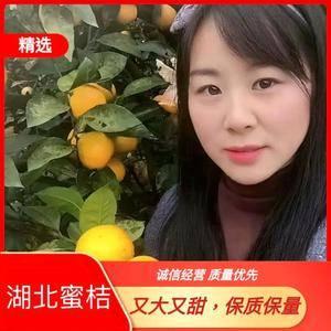 黄岩蜜橘  产地直销 看货采摘,保质保量,欢迎咨询订购!...