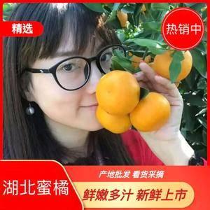 蜜橘 产地直销 看货采摘 保质保量 欢迎咨询订购!联系电...