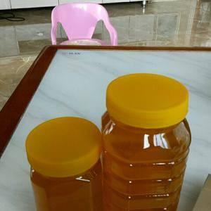 贵州遵义自家产土蜂蜜 联系电话:15285782881