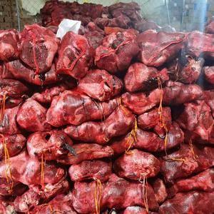 草原羔羊头同年,白头六感,现货25吨鬼脸,电微15547953991