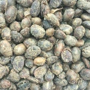 销售发酵大豆菌肥可以替代粪便和化学肥料,和有机肥料有机质...