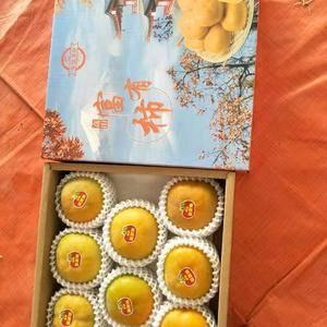 云南保山甜脆柿大黄果火热上市中,18887547930