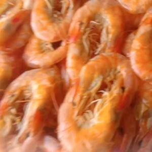 无盐碳烤虾干即食大号特大特级孕妇零食补钙小虾干海味海虾干...